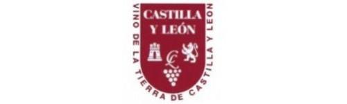 VT Castilla y Léon