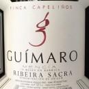 PP ADVOCATE WINES ~ Guímaro ~ Finca Capeliños 2012 ~ Ribeira Sacra ~ 94RP
